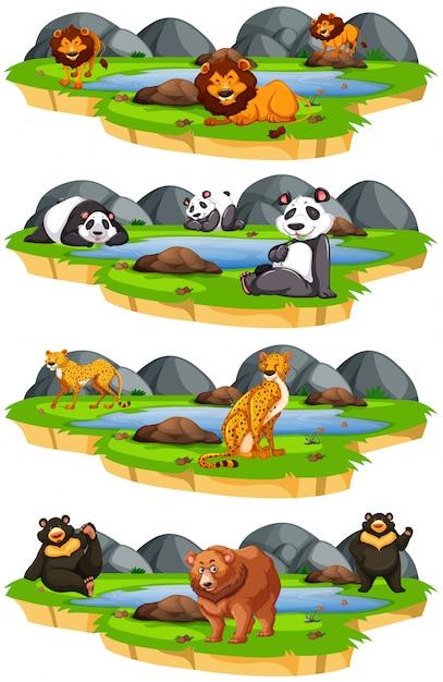 Set di animali in natura Vettore gratuito