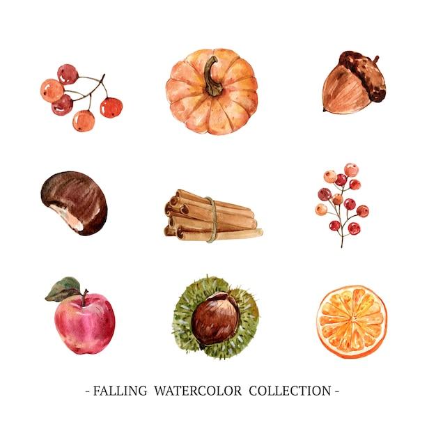 Set di autunno creativo dell'acquerello Vettore gratuito
