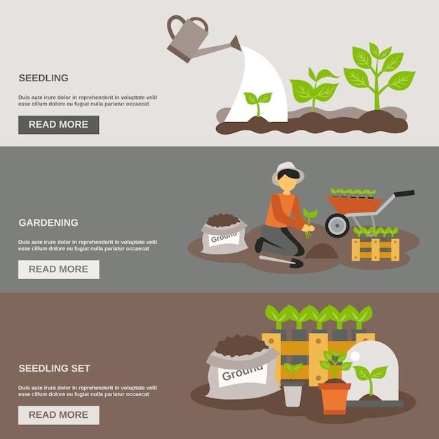 Set di banner di semenzale Vettore gratuito