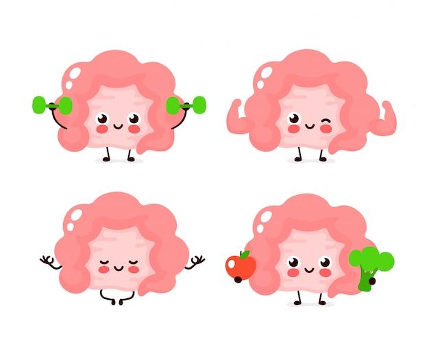 Set di caratteri di organo dell'intestino umano felice sano forte forte Vettore Premium