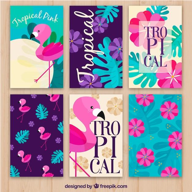 Set di carte flamenco e fiori tropicali Vettore gratuito