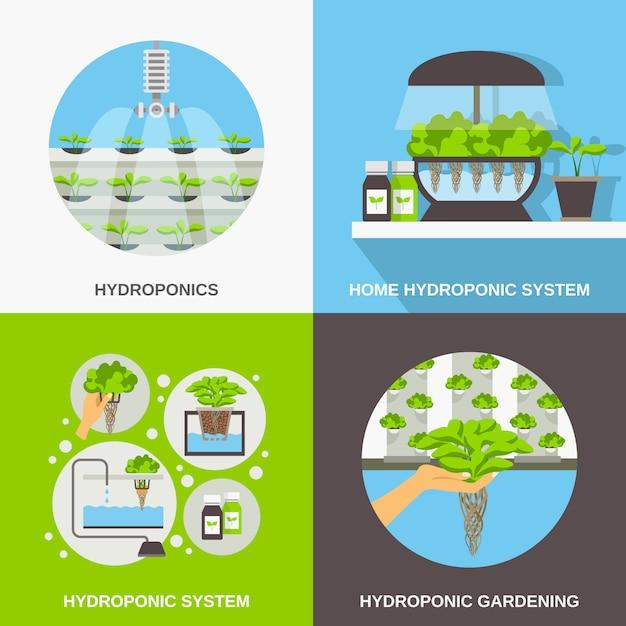 Set di carte piatte hydroponics Vettore gratuito