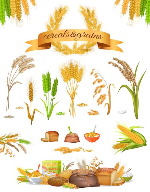 Set di cereali e cereali su sfondo bianco Vettore Premium