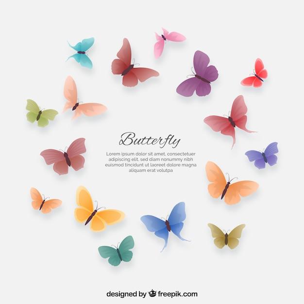 Set di coloredbutterflies Vettore gratuito