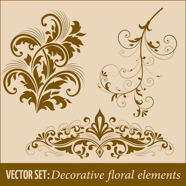 Set di elementi di design calligrafico e decorazione della pagina Vettore gratuito