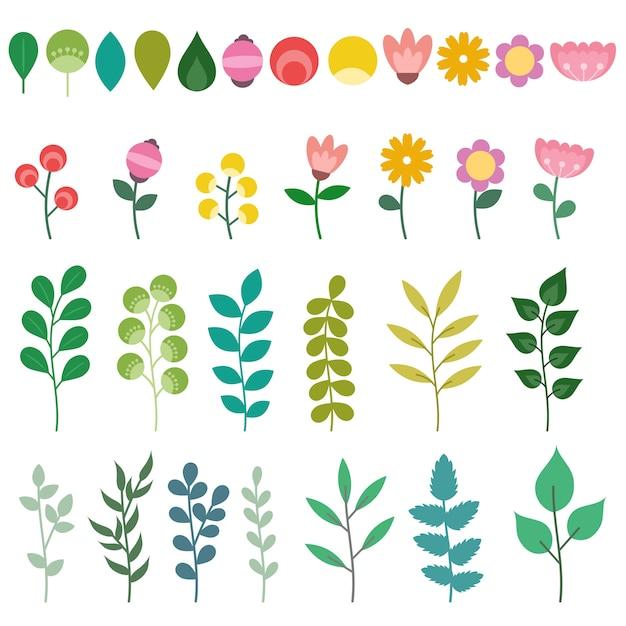 Set di elementi floreali isolati Vettore Premium