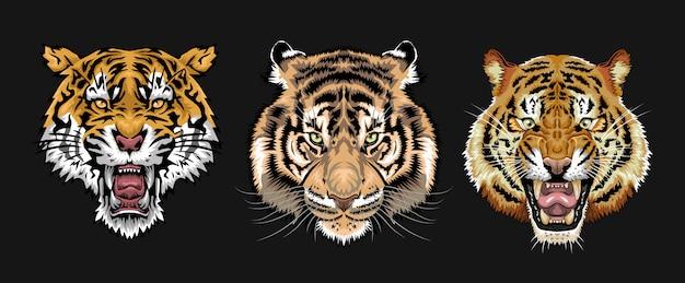 Set di facce di tigre Vettore Premium