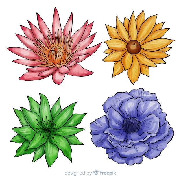 Set di fiori disegnati a mano ad acquerello Vettore gratuito