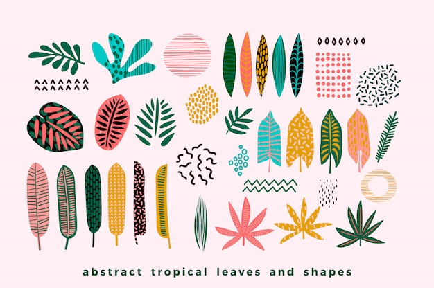 Set di foglie tropicali astratte Vettore Premium