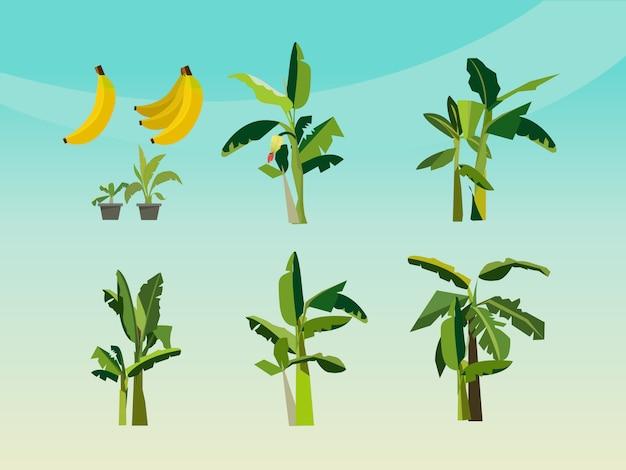 Set di icona di banano Vettore Premium