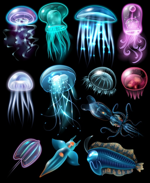 Set di icone di animali sott'acqua Vettore gratuito