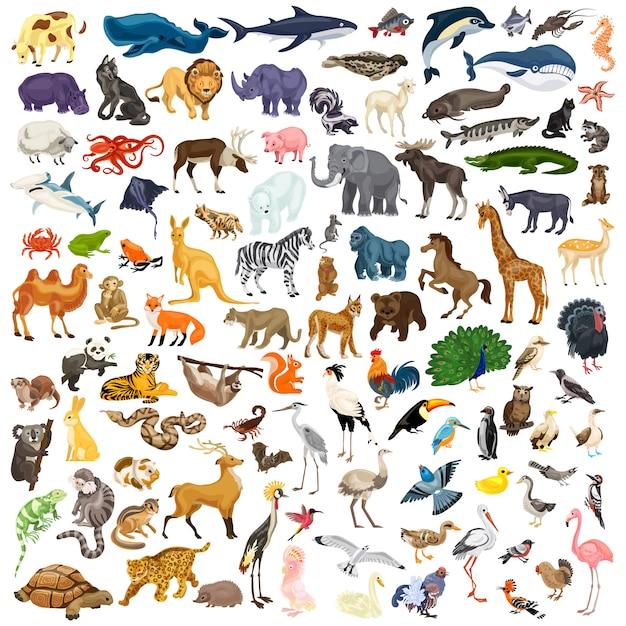 Set di icone di animali Vettore Premium