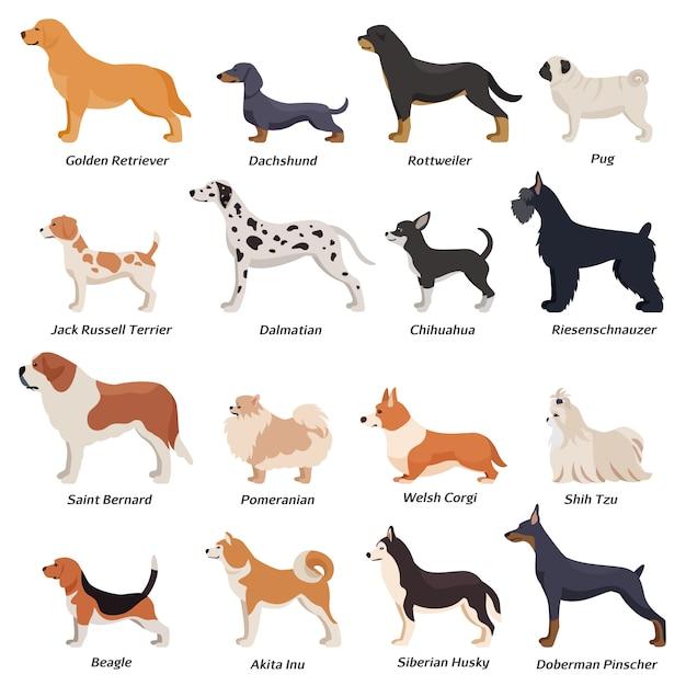 Set di icone di cani di profilo Vettore gratuito