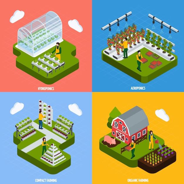 Set di icone di concetto di coltura idroponica Vettore gratuito