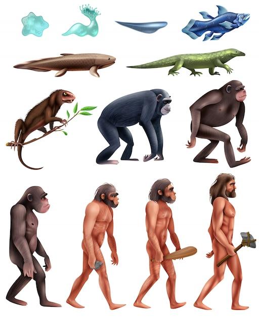 Set di icone di darwin evolution Vettore gratuito
