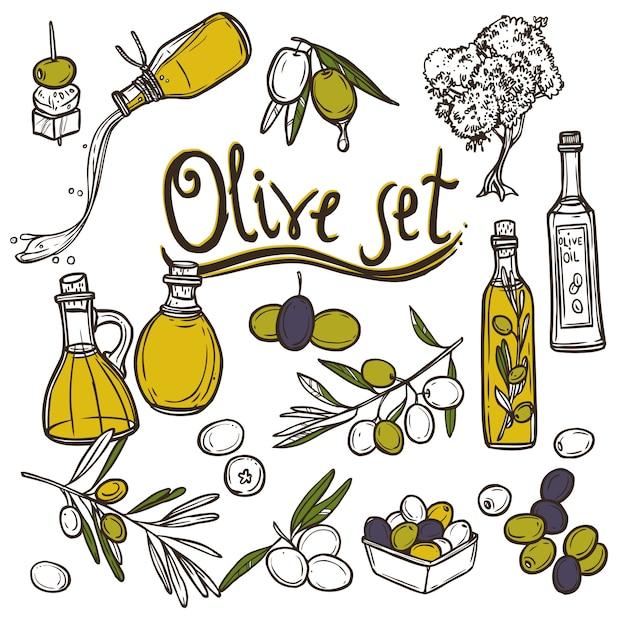 Set di icone di oliva Vettore gratuito