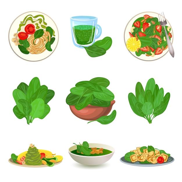 Set di icone di spinaci. insieme del fumetto delle icone di spinaci Vettore Premium