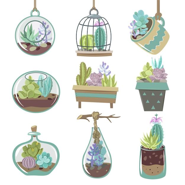 Set di icone di succulente Vettore gratuito