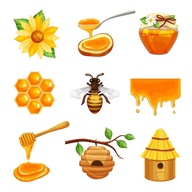 Set di icone isolato miele Vettore gratuito