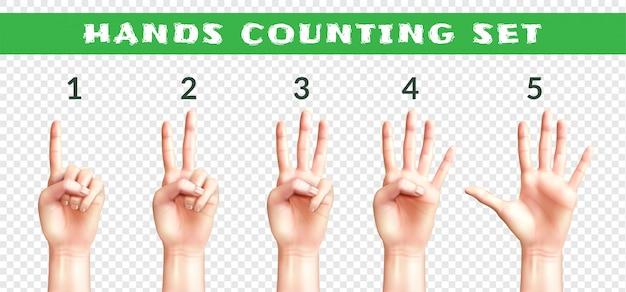 Set di mani di uomini contando da uno a cinque isolati su trasparente realistico Vettore gratuito