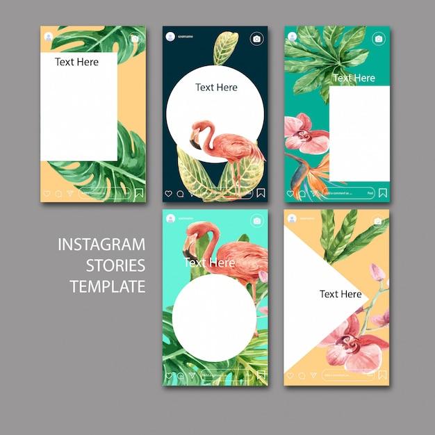 Set di modelli di instagram dell'acquerello Vettore gratuito