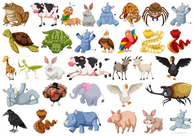 Set di personaggi animali Vettore gratuito