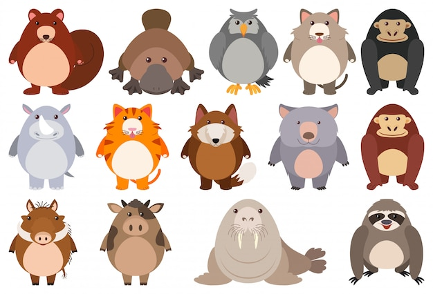 Set di personaggio dei cartoni animati Vettore gratuito