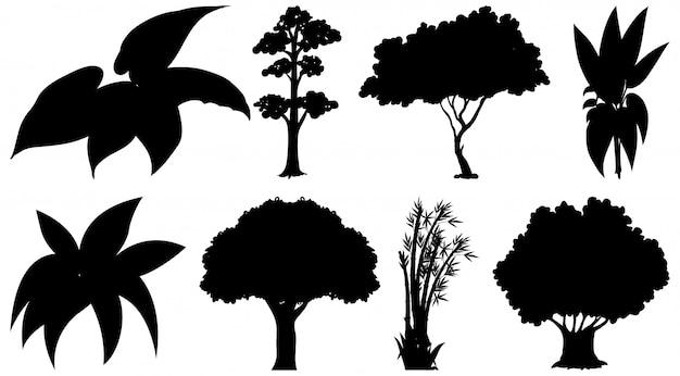 Set di pianta e albero silhouette Vettore gratuito