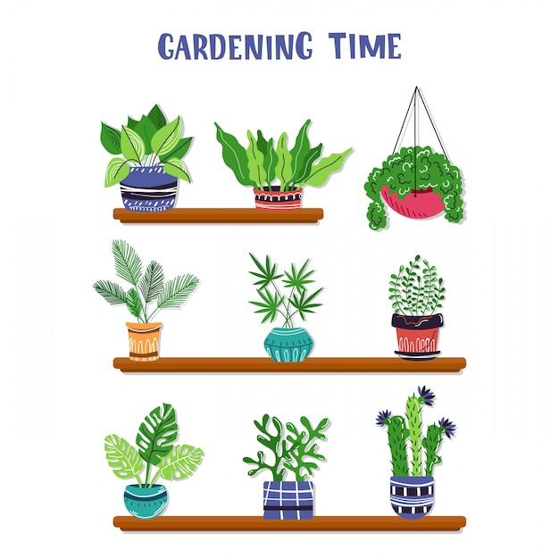 Set di piante in vaso o fiori in vaso Vettore Premium