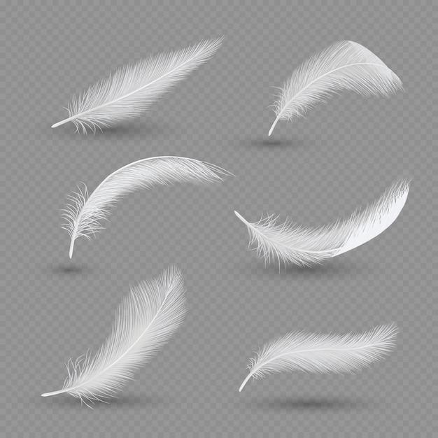 Set di piume di uccelli bianchi, realistico Vettore Premium
