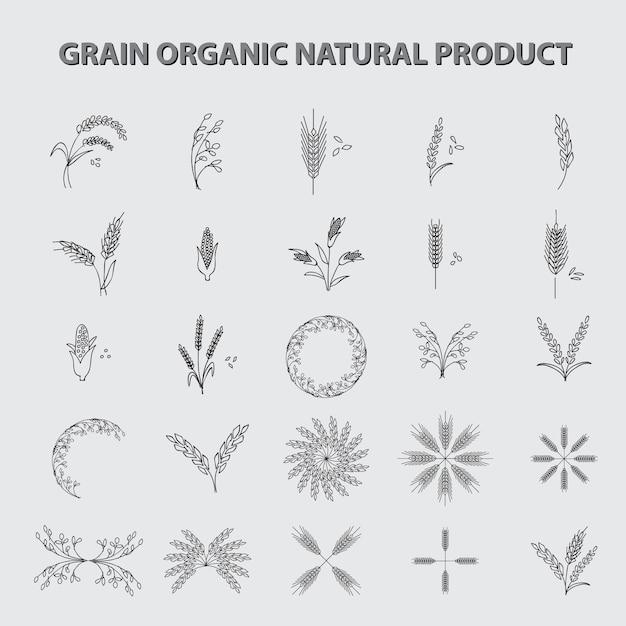 Set di prodotto biologico biologico di grano Vettore Premium