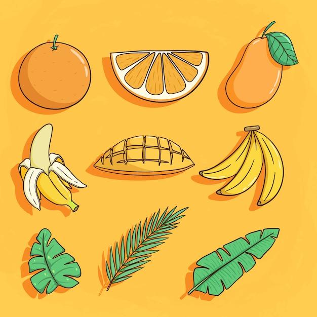 Set di prodotto tropicale come arancia, banana e foglia di cocco Vettore Premium
