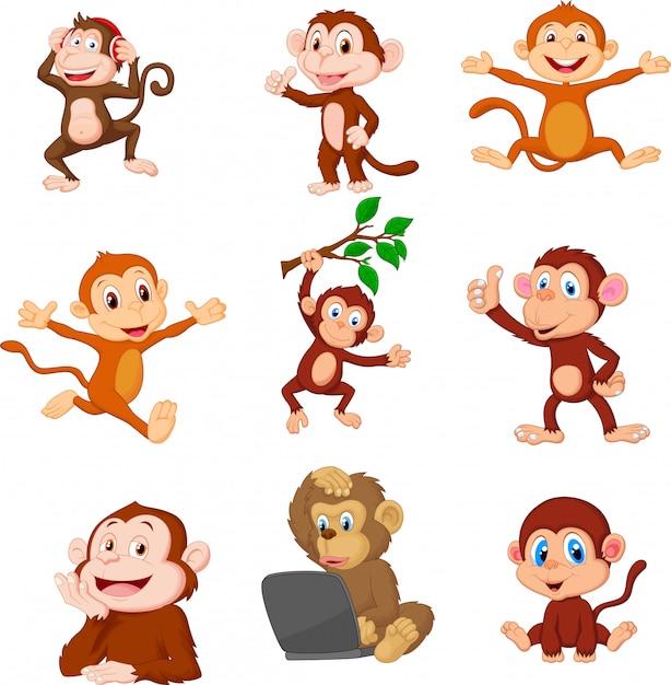 Set di raccolta di scimmie felici dei cartoni animati Vettore Premium