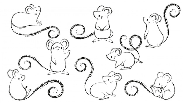Set di ratti disegnati a mano, topo in diverse pose su bacground bianco. Vettore Premium
