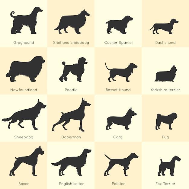 Set di razze di cani Vettore gratuito