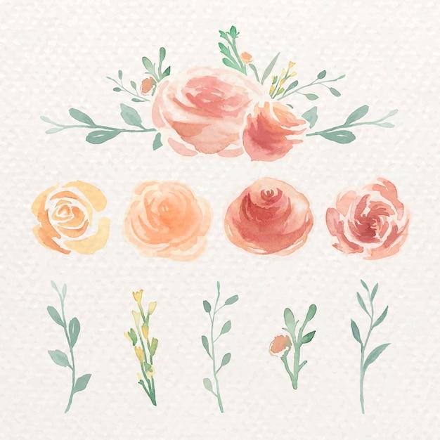 Set di rose ad acquerelli Vettore gratuito