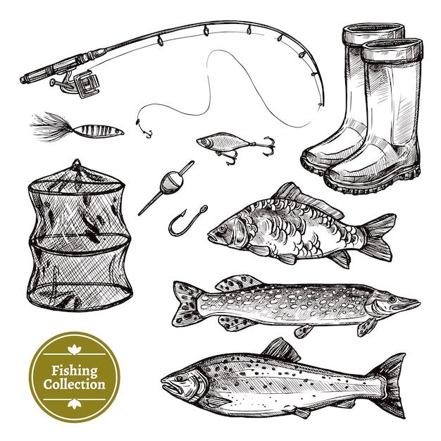 Set di schizzo di pesca Vettore gratuito