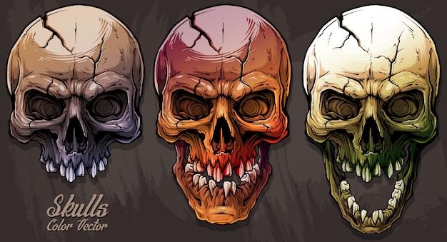 Set di teschi umani colorati grafici dettagliati Vettore Premium
