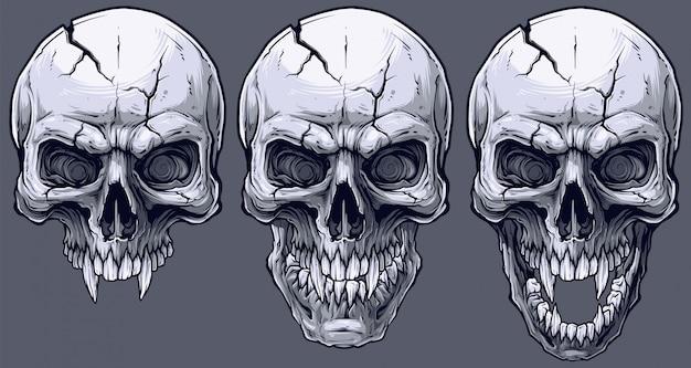 Set di teschi umani in bianco e nero grafico dettagliato Vettore Premium