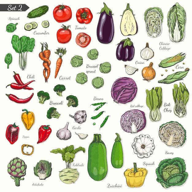 Set di verdure in stile schizzo Vettore Premium