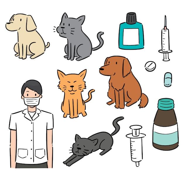Set di veterinario, animale e attrezzature Vettore Premium