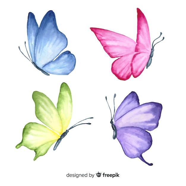 Set farfalla disegnato a mano Vettore gratuito