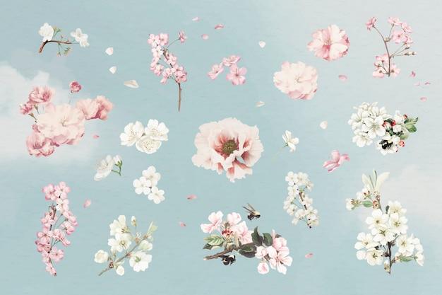 Set fiore rosa Vettore gratuito