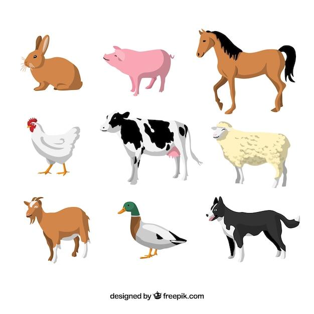 Set piatto di animali domestici Vettore gratuito