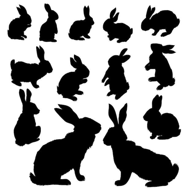 Set sagome di coniglio Vettore Premium