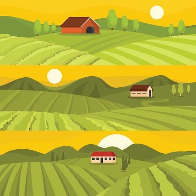 Sfondi di vino di vigneto Vettore Premium