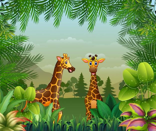 Sfondo a tema giungla con giraffe Vettore Premium