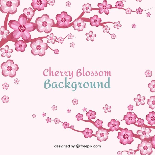 Sfondo Bianco E Rosa Fiori Di Ciliegio Scaricare Vettori Gratis