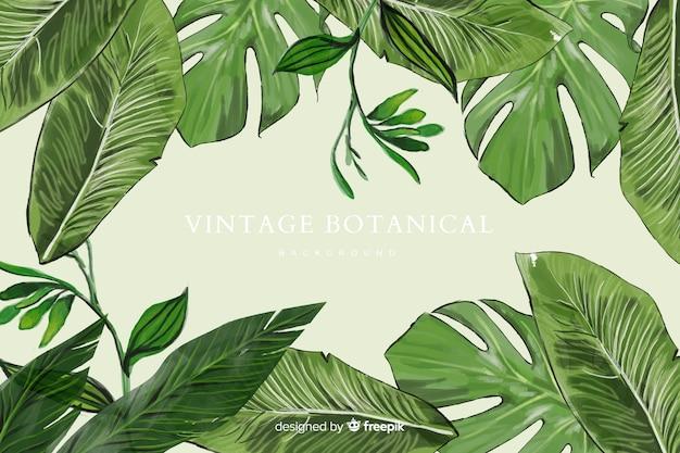 Sfondo botanico Vettore gratuito