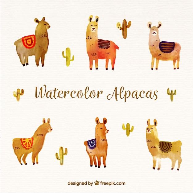 Sfondo carino alpaca dell'acquerello Vettore gratuito